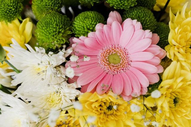 Use aspirin to keep fresh cut flowers
