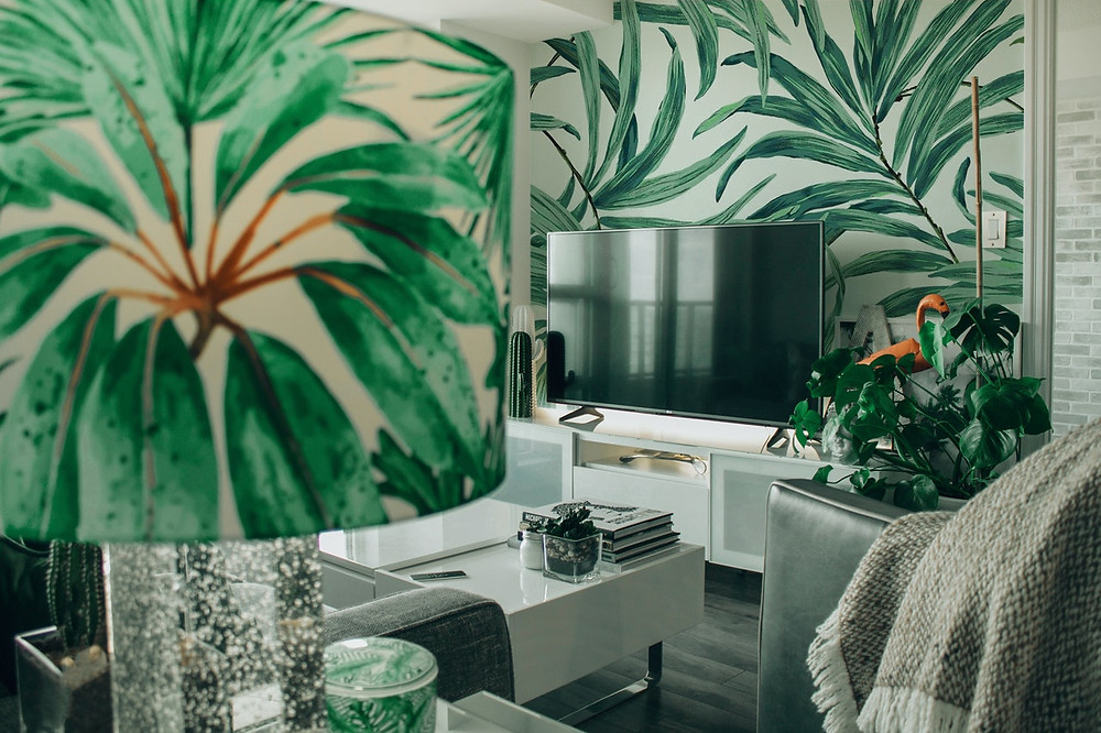 Green plants inside home looks great