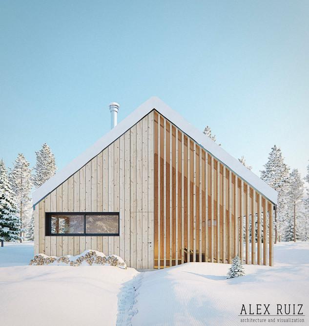 Private house (Chamonix, France)