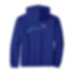 DHY-Banner-PULLOVER-HOODIE.png
