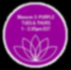 CIRCLE-B3-purple.png
