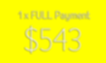 PP-YELLOW-543.png