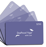 eGiftCard-collection-$250.png