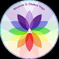 Blossom 3 Chakra Yoga