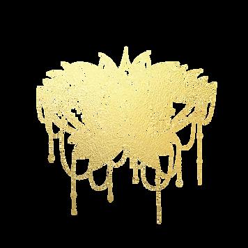 LotusmandlaNOShadow.png