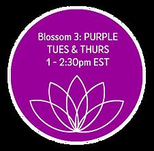 Blossom 3 Purple