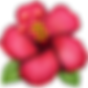 emoji hibiscus.png