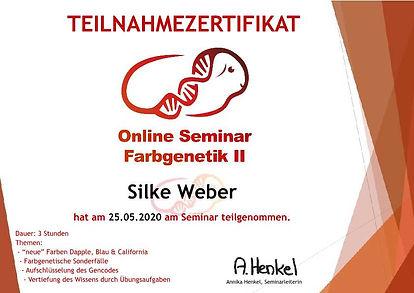 Weber-Silke Farbe II-p1.jpg