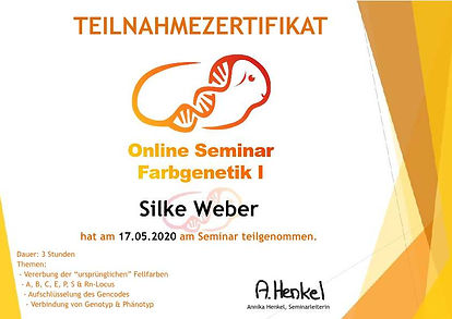 Weber-Silke Farbgenetik I-p1.jpg