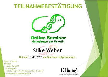 Weber Silke Grundlagen 20200511-p1.jpg