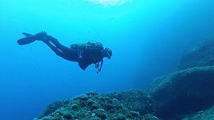 diver-min12.jpg