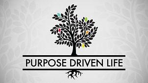 purpose driven life 02.jpg