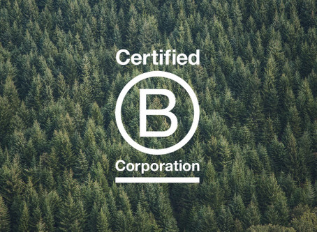 B Corp Continues to Raise the Bar