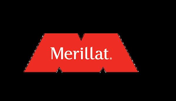 merialltt1.png