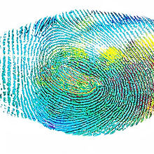 fingerprint-328992__480.jpg