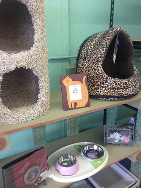 Cat Supply Aisle.JPG
