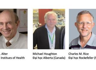 Giải Nobel Y học 2020: một ca tiêu biểu về 'translational science' cho bệnh viêm gan