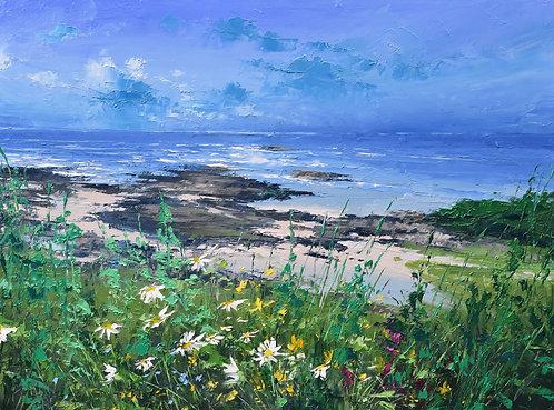 Coastal Daisies II