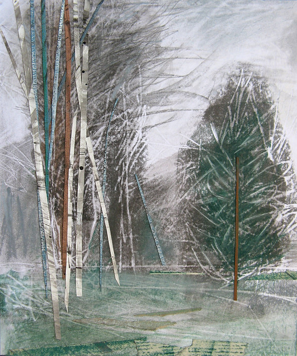 'Conifers and Birch Trees II', Janine Ba