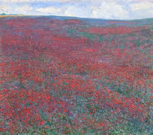 Poppy Fields By Poitiers