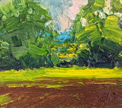 Emerson Mayes - Early Summer Greens, oil on board, 15x13cm, £350