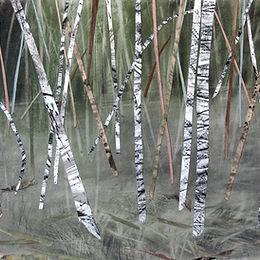 'Quiet Birch Wood', Janine Baldwin, acry