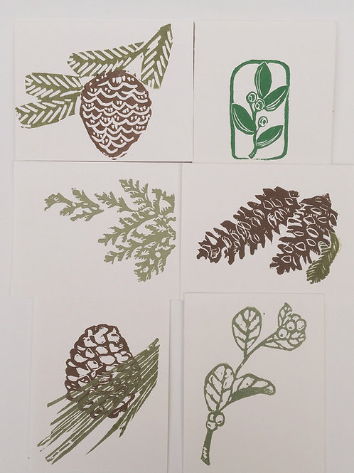 Set of Evergreen Cards