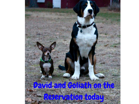 David and Goliath on the Reservation today