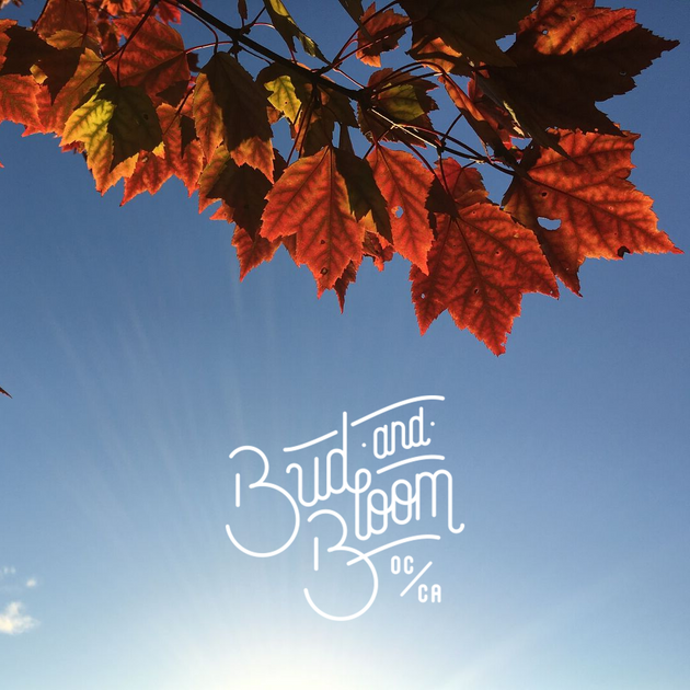 Tues, Sept 24th - Happy Fall