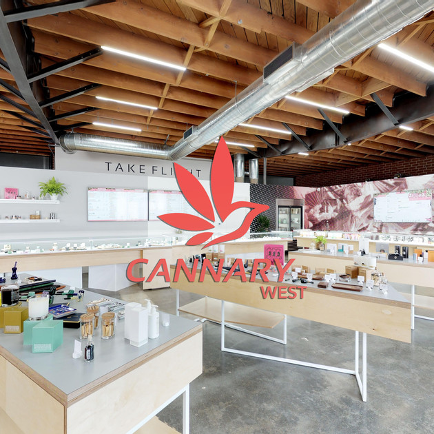 Cannary Store Shot with logo.jpg