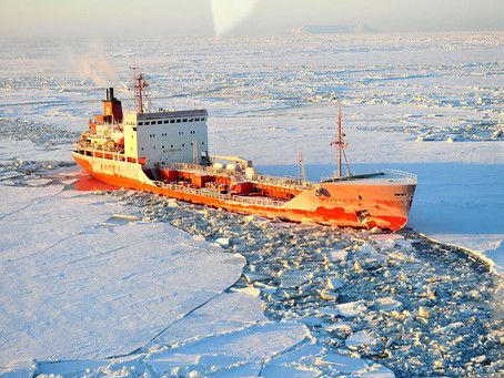 Explosive Growth in Russian Arctic