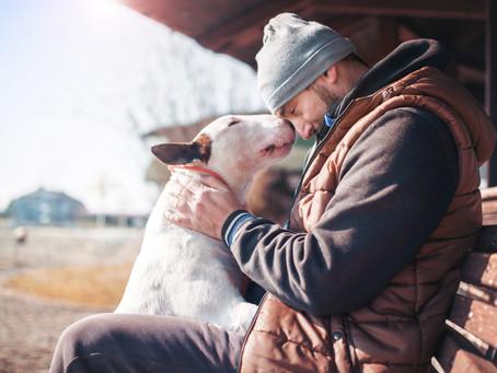 Un chien d'assistance, est-ce fait pour moi?