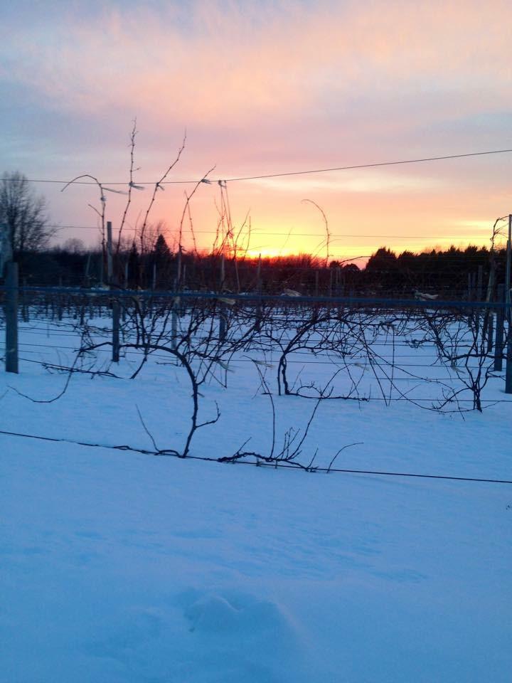 IMG_2964winter_sunset