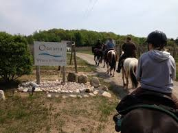 wine_horse_trail