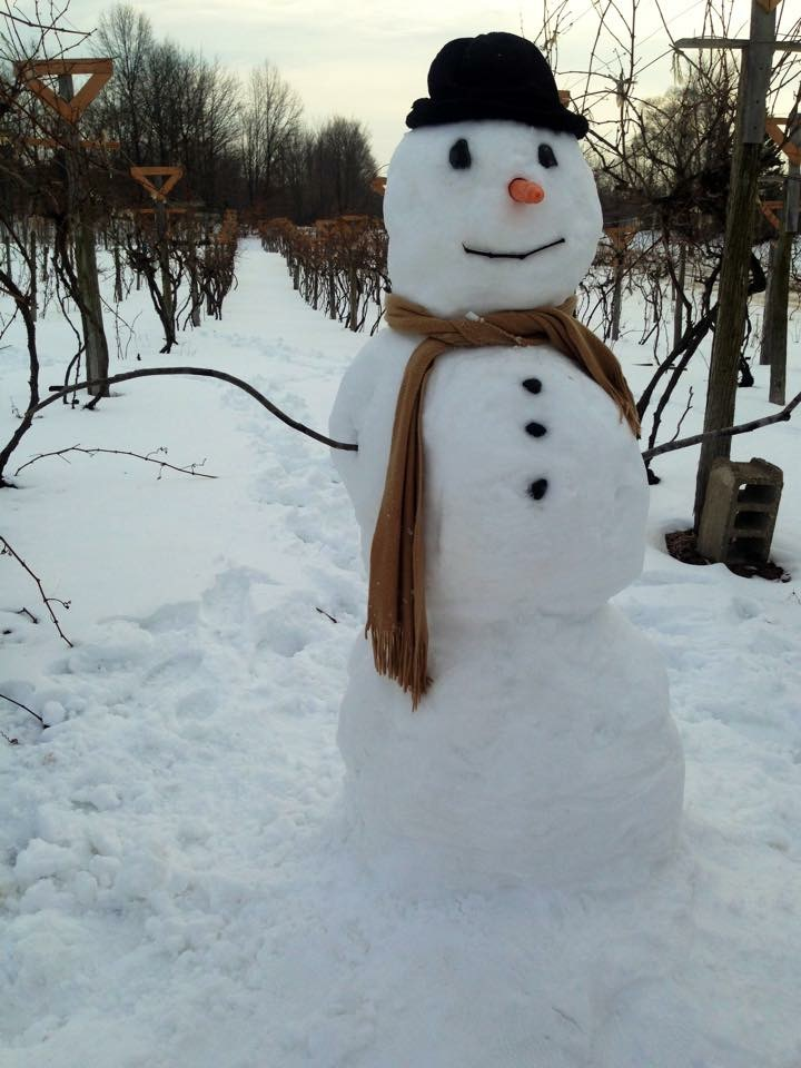 IMG_2965snowman_in_the_vineyard
