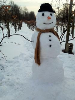 IMG_2965snowman_in_the_vineyard
