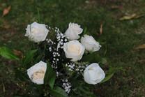 Flores-De-Colores (7).JPG