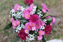 Flores-De-Colores (16).JPG