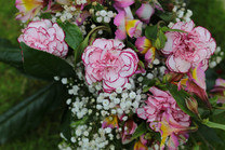 Flores-De-Colores (1).JPG