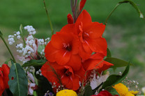 Flores-De-Colores (2).JPG