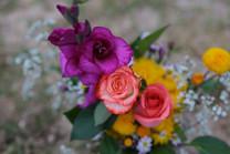 Flores-De-Colores (20).JPG