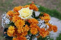 Flores-De-Colores (19).JPG
