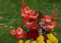 Flores-De-Colores (37).JPG
