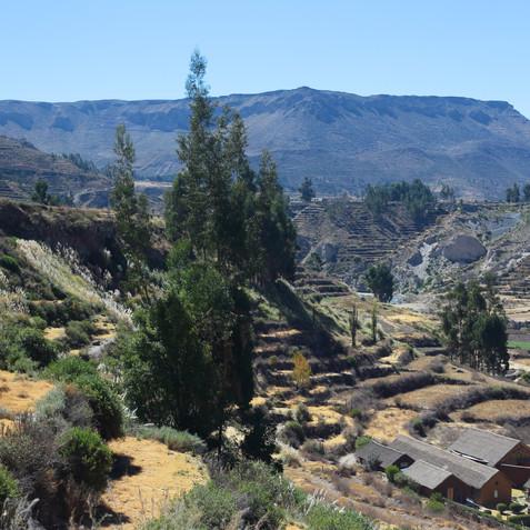 Chivay_Arequipa_Peru (31).JPG
