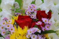 Flores-De-Colores (26).JPG
