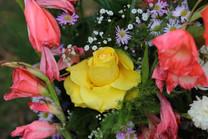 Flores-De-Colores (10).JPG