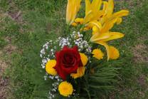 Flores-De-Colores (33).JPG