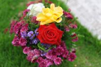Flores-De-Colores (27).JPG