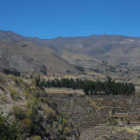 Chivay_Arequipa_Peru (30).JPG