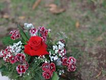 Flores-De-Colores (8).JPG